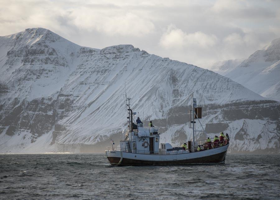 BOAT ICELAND